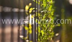 Ограждение забор (19)